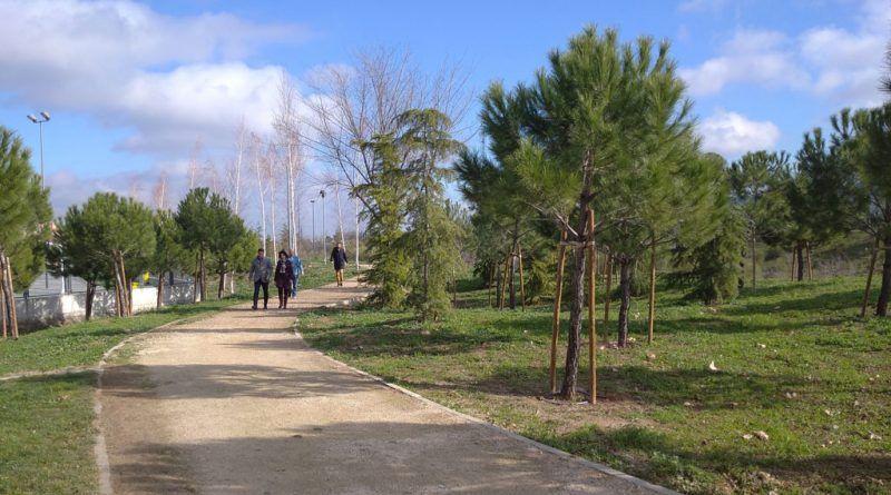 Bosque Urbano Soto Henares Torrejón
